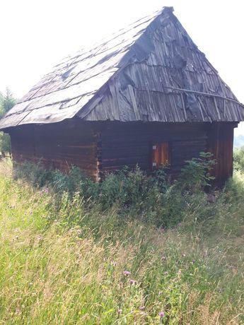 Coliba de lemn situata la munte.