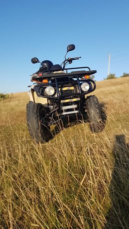 ATV.Motortek175c