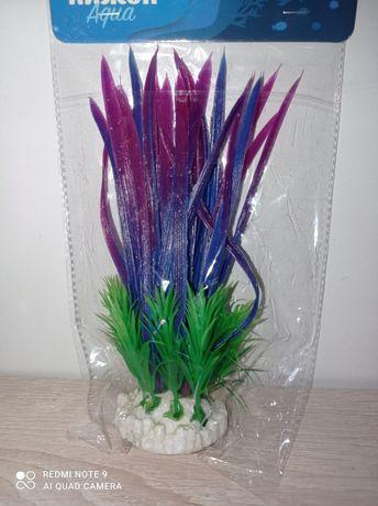 Растение в аквариум декоративное