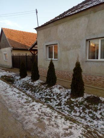 Vând casa in Valea lui Mihai