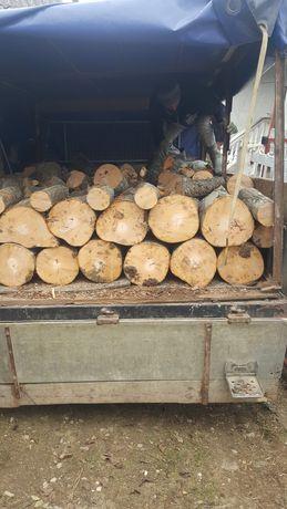 Vindem lemne de foc fag