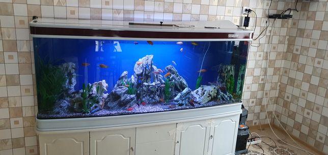 Продаю аквариум на 1000 литров