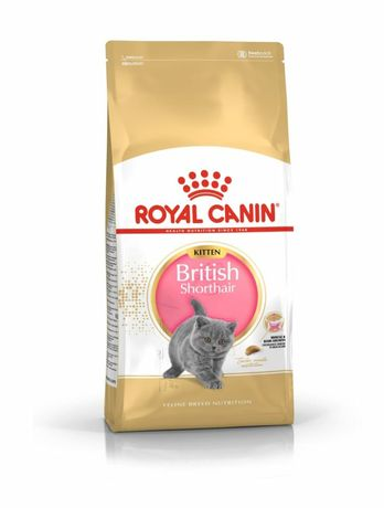Сухой корм для котят британцев и шотландцев Роял Канин