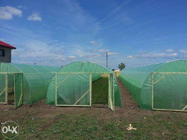 Solarii legume LOW COST de tip KS