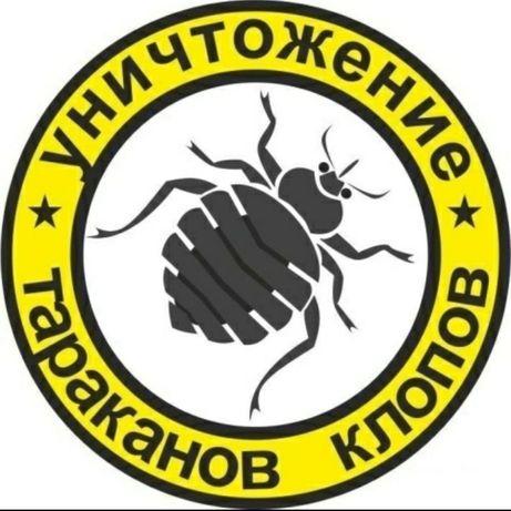 ДЕЗИНФЕКЦИЯ уничтожение крыс,клопов,тараканов,муравьев,мышей,клещей!