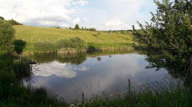 Lac și livadă în extravilan