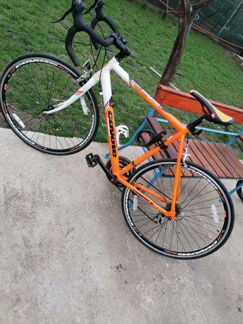 Bicicleta Coyote