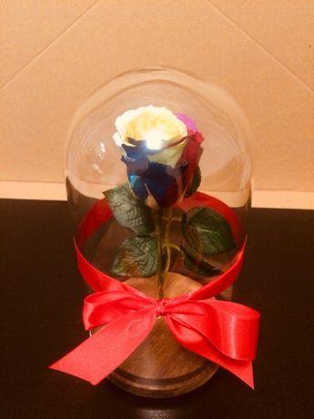 Trandafir multicolor in cupola de 30 cm 180 lei
