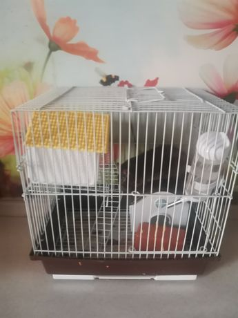 Крыса Матильда с клеткой