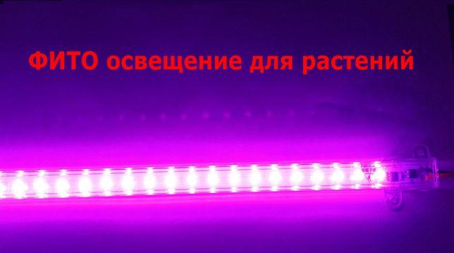 освещение для рассады цветов растений дома и в теплицах LED ФИТО-ЛАМПА