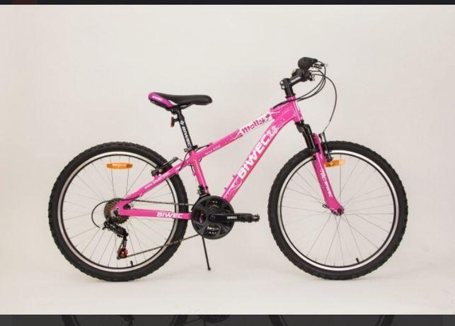 Велосипед Biwec molly розовый