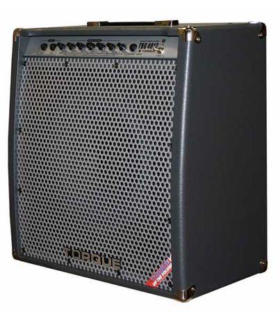 Бас-гитарный комбо-усилитель Torque TBG4012 (разбит корпус)