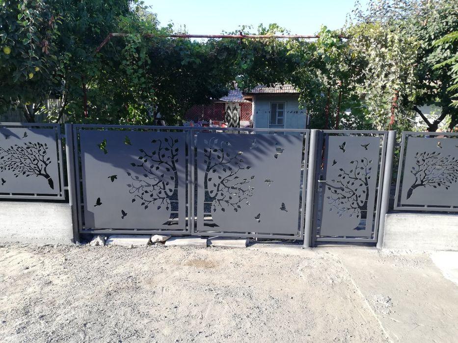 Garduri debitate plasmă Perisoru - imagine 1