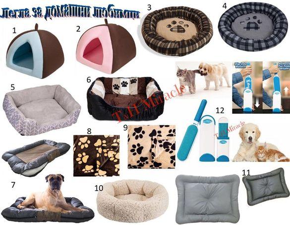 легла за кучета легла за котки