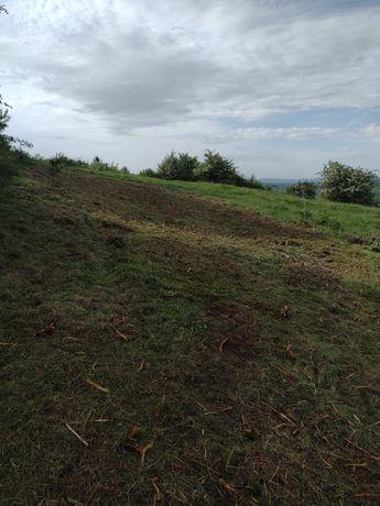 Curățare pășuni terenuri