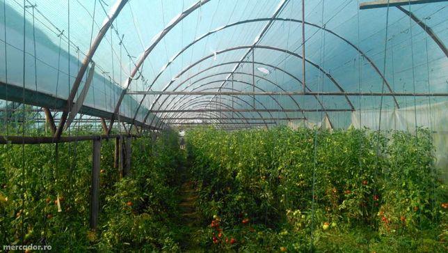 Solar agricol profesional