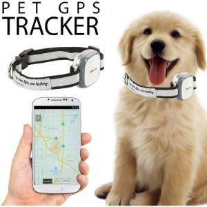 GPS Ошейник Для Собак/ВОДОНЕПРОНИЦАЕМЫЙ/Вы Не Потеряете Своего Любимца