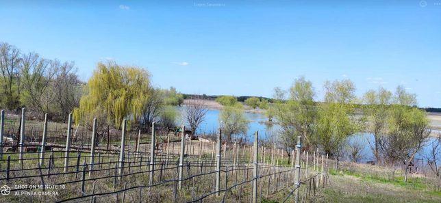 Vand gradina/teren 2190 mp, intravilan, zona Varariei balta in Tulcea