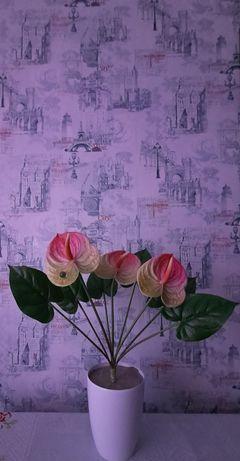 Цветок мужское счастье 7000тенге