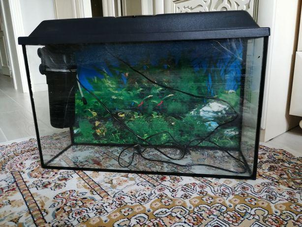 Продается аквариум