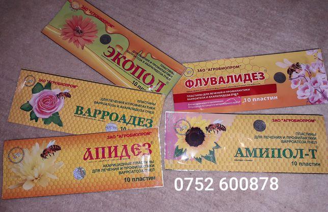 Tratamente Rusesti pentru albine benzi