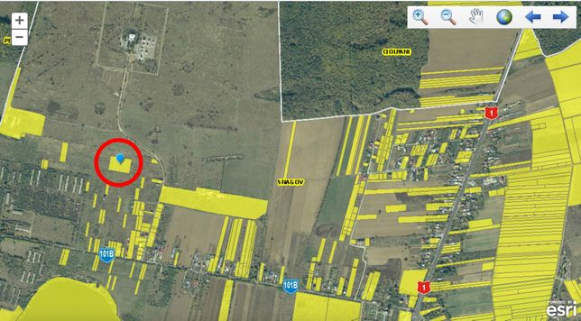 PROPRIETAR Vând Teren extravilan Tâncăbești, Snagov, Ilfov - 7873 mp