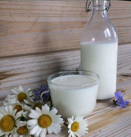 Козье молоко свежий