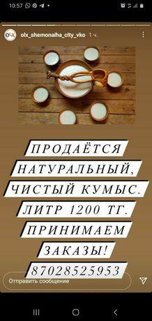 Кымыз 1000% натуральный и полезный