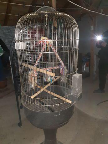 Voliera papagali