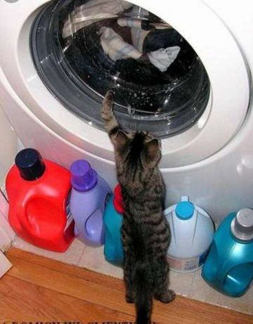 Reparații mașini de spălat rufe, vase, electrocasnice.