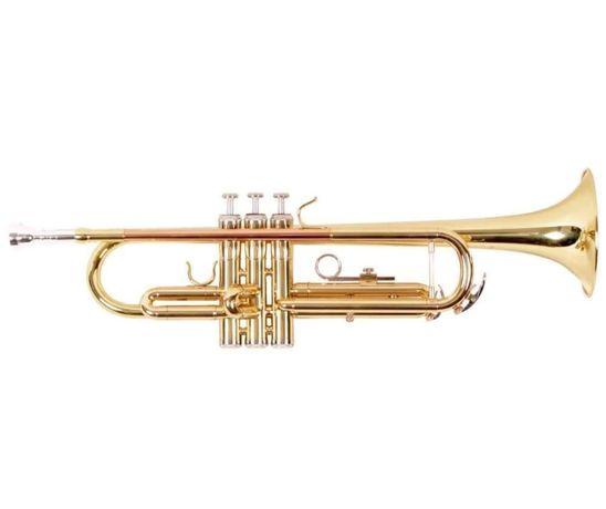 Kit Trompeta incepator Slade auriu cupru geanta transport NOU