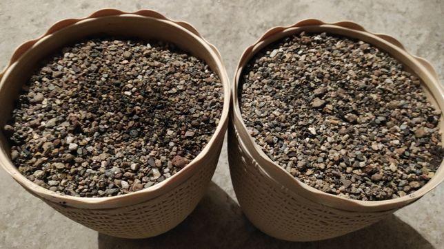 Грунт мелкой фракции для травников в перемешку с питательным грунтом