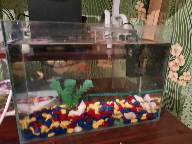 Продам аквариум  в хорошем состоянии