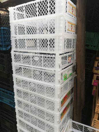 Lădițe plastic de la struguri