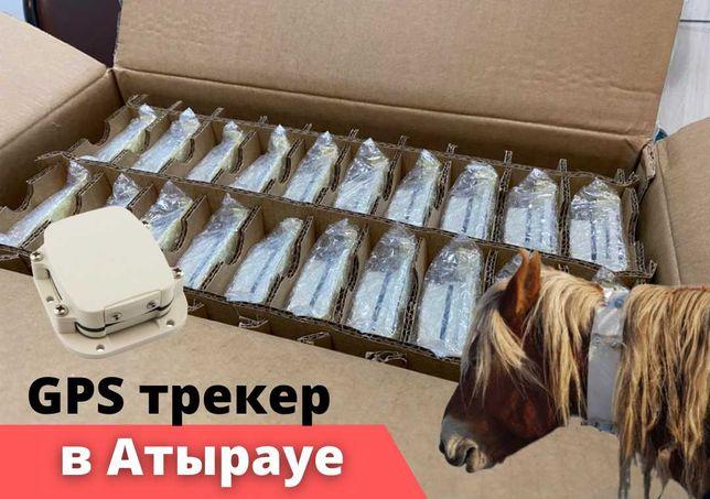 Gps трекер SmartOne C для лошадей и других животных Атырау