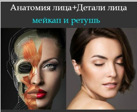 Видеокурс - Анатомия лица + Детали лица