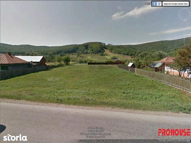 Luncani - stradal - teren 1.123mp