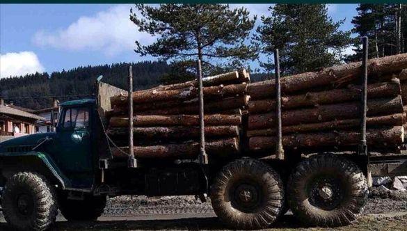 GPS на камиони за дърводобив