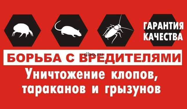 Опыт 7 лет! Дезинфекция клопов, тараканов, клещей, муравьев, крыс