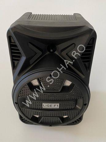Boxa portabila Bluetooth, USB, telecomanda difuzor 20 cm, 100W Lige F1