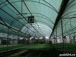 Plasa filtru UV Umbrire 30%-40%-50% -Culturi Agricole.Ochiuri Prindere