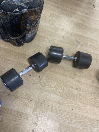 Gantere profesionale fixe 48 kg ambele, 24+24=48 kg,  pret 450 ron