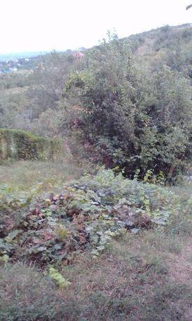 продам земельный участок 8 сот (плодоносящий сад)