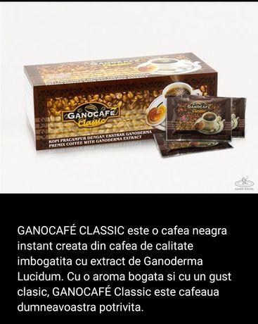 GanoCafe Classic