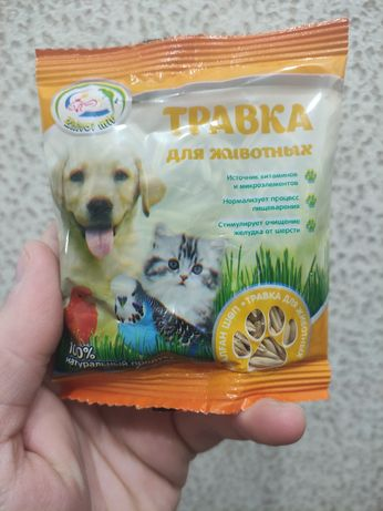 Травка для животных