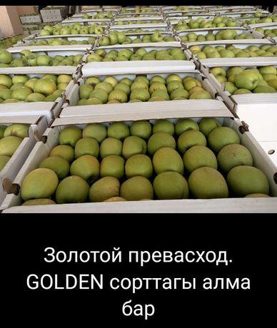 Яблоки оптом Золотой превасход қалаға доставкасы бар 50кг жоғары алса
