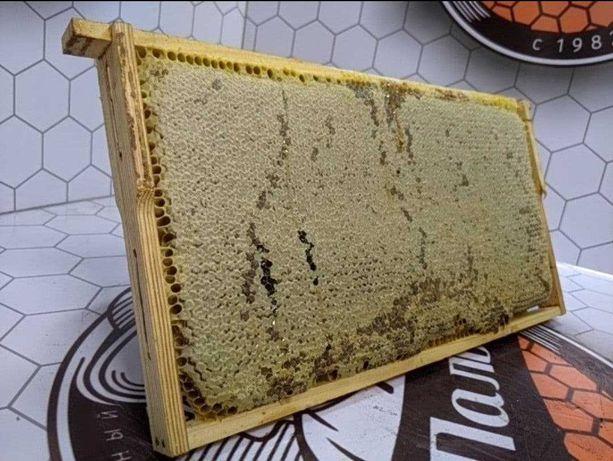 Продам мёд оптом 2021г