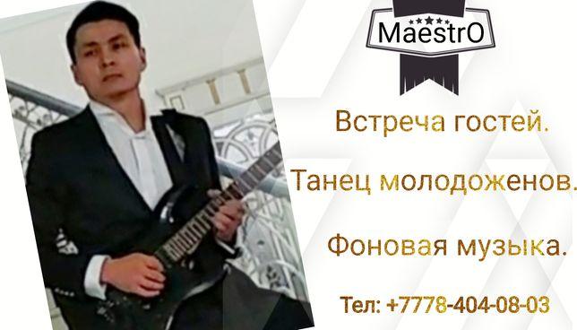 Живая музыка, встреча гостей, Эл.гитара.