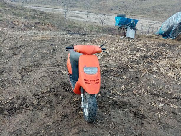 Scuter motociclete