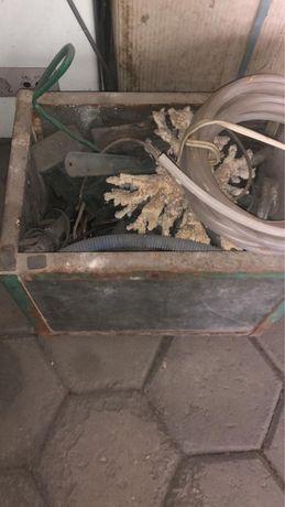 Аквариум с компрессором, оьогревателем и кораллами